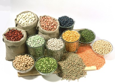 Nutrition for Everyone: Legumes